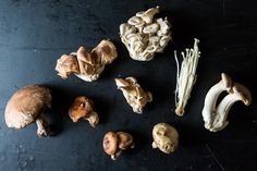 The beginner's guide to mushroom hunting — because every fungi forager has to start somewhere.