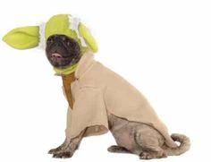 Star Wars Yoda Jedi Master Cute Fancy Dress Up Halloween Pet Dog Cat Costume | eBay