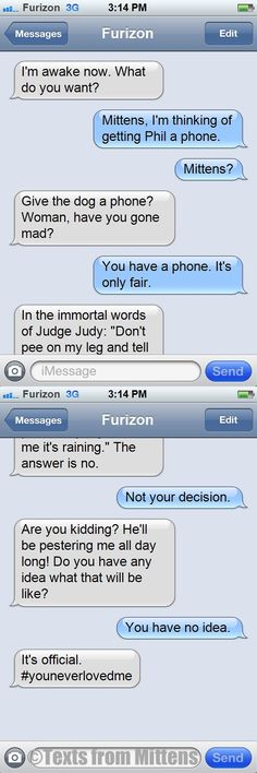 NEW daily Texts from Mittens: The Phil's Getting a Phone Edition