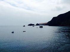 Trip to Santa Cruz Island