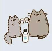 pusheen and stormy the kitten drink milk(: cheers!