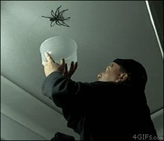 Nope. | 15 Things That Will Make You Say NOPE