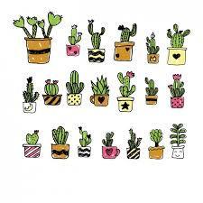 Resultado de imagem para cactus desenho