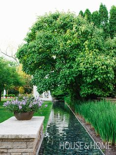 Nestled alongside towering trees, lush plants and colorful blooms, a long pond gives this backyard a sense of completeness. | Photographer: Michael Graydon