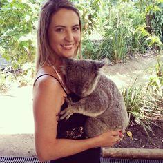 Koko koala  #koala #qld #currumbinwildlifesanctuary by chelsea__c http://ift.tt/1X9mXhV