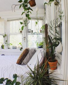 When you live in an apartment home, you may not know exactly where to start by way of decorating your place. You don't own the apartment, so you can't do whatever you like to your residence like you could if… Continue Reading → Cozy Bedroom, Bedroom Inspo, Home Decor Bedroom, Bedroom Inspiration, Bedroom Plants, White Bedroom, Bedroom Ideas, Dream Rooms, Dream Bedroom