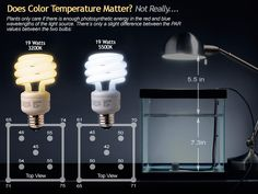 Interesting: Read later.........Lighting Information Thread: PAR Data for Spiral Power Saver Bulbs comparison