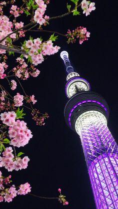 東京カメラ部 Popular:Masahiro Yazu