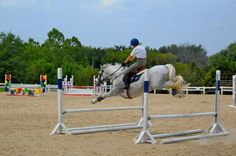 Who needs a bounce when you can have an oxer... a really WIDE oxer.