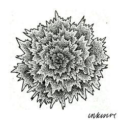 imparfait flower