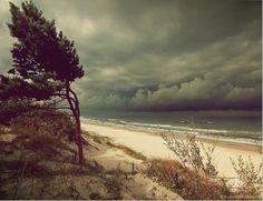 Palanga, Lithuania | Photo Credit Aleksandras Jacukevicius