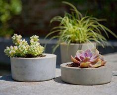 DIY: modern concrete planter