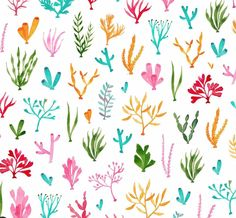 🐠WINNER ANNOUNCED!🐡The winner of this months pattern suggestion competition is with their coral suggestion! I created a coral… Coral Watercolor, Watercolor Art Diy, Watercolor Animals, Coral Reef Animals, Children's Book Illustration, Illustrations, Little Fish, Environment Design, Background Ideas