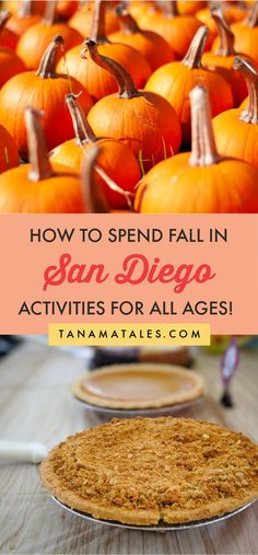 Things to do in San Diego during the fall | Fall in California | Things to do in La Jolla | Things to do in Pacific Beach | Things to do in Ocean Beach | Fall Photography | Apple Picking | Pumpkin Patch | Corn Maze | Fall Road Trip | Fall Day Trip | Apple Pie | Pumpkin Pie | Sweet Potato Pie | Fall Colors | Fall Foliage | San Diego Fall Fashion | San Diego Fall Aesthetic | Fall Ideas | Fall Bucket List | Fall Activities | Pumpkin Spiced Latte | Fall Travel | Fall Destinations USA | Fall…