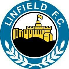 Linfield F. (from the city/agglomeration of Belfast) - logo without year of founding Soccer Logo, Football Team Logos, Football Soccer, Soccer Teams, British Football, European Football, Sports App, Sports Clubs, Silhouette Portrait Projects