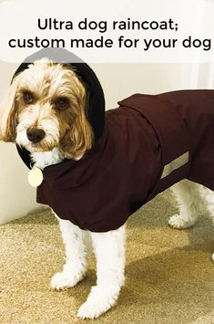 A custom dog coat can be made to cover the parts that need to be covered from head to belly to tail. Waterproof Dog Coats, Waterproof Fabric, Dog Smells, Dog Winter Coat, Dog Raincoat, Pup, Best Friends, Dogs, Flannel