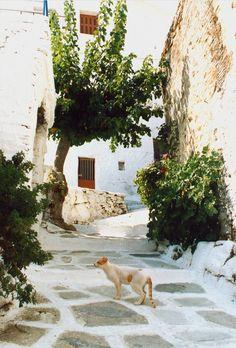 Parikia 1987 Paros, Greek Islands, Greece, Memoirs, Greek Isles, Greece Country