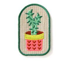 Cactus plantes fer sur Patch