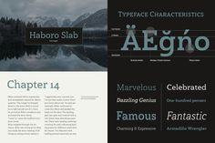 It's a nose-to-the-grindstone kind of font like the first of its family. This sl. Slab Serif Fonts