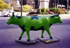 Cows On Parade Chicago 1999 - Bing Images