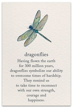 Dragonfly - Printed with soy ink on recycled paperItem # 1214 Categories: , , Tag: Little RemindersMeanings of LifePassagesPretty WordsAll CardsAnniv Dragonfly Quotes, Butterfly Quotes, Flower Quotes, Spiritual Symbols, Dragonfly Meaning Spiritual, Dragonfly Symbolism, Yoga Symbols, Dragonfly Wings, Lotus Flower Symbolism