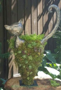 Head and tail made with Paverpol and Paverplast on a chicken wire frame. After 2 weeks of curing filled with soil and peatmoss and succulents.