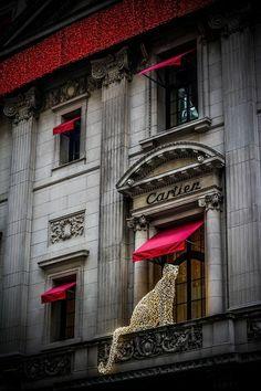 Cartier mousseux à Paris ~ Christmas at Cartier