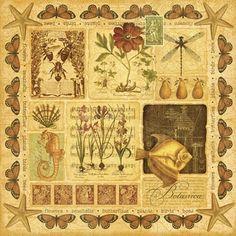 Coleção Graphic 45 - Botanicabella - Casa do Restaurador
