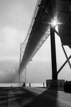 Golden Gate Bridge, Cool Cats, Black And White, Cool Stuff, World, Photography, Travel, Photograph, Viajes