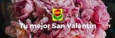 ¡Queremos que este San Valentín sea más verde que nunca! Por eso te invitamos a responder a una sencilla pregunta. Puedes ganar uno de los tres lotes de productos COMPO Jardinería que sorteamos.