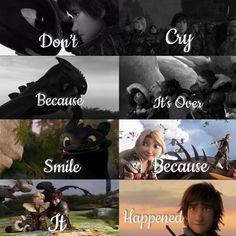« Dont cry because it's over, smile because it happened » ❤️❤️❤️😢😢😢 #toothless #krokmou #hiccstrid #hiccup #httyd #httyd2 #httyd3… Dragon 2, Toothless Dragon, Dragon Rider, Httyd Dragons, Dreamworks Dragons, Cute Dragons, Disney Pixar, Disney And Dreamworks, Dragon Memes