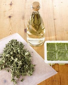 Herbs 101 - Martha Stewart -- methods of preserving herbs.  Blanch basil and freeze as leaves.