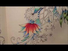 THE POND part 1 | The Magical Jungle by Johanna Basford - YouTube