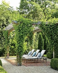 Gorgeous pergola and resting nook ....