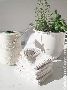 Cotton knitted washcloths.....I'm making these!!