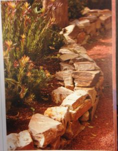 Serpentine low stone wall and gravel path