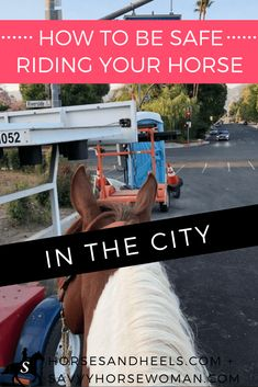 How to Be Safe Riding Your Horse in the City - Horses and Heels + Savvy Horsewoman Equestrian Boots, Equestrian Outfits, Equestrian Fashion, Equestrian Style, Types Of Horses, My Horse, Horse Tips, Horse Training, Training Tips