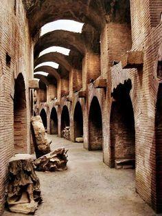 colleseum.....path of the gladiators...Roma...