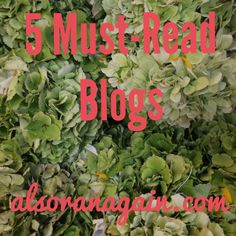 5 Must-Read Blogs- alsoranagain - Real Housewives recaps, travel, restaurants, food, style, fashion, books, and decor.