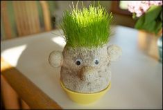 Cute indoor-gardening-craft project for kids ... I'd call my chia-sock guy Mr. deGrassi.