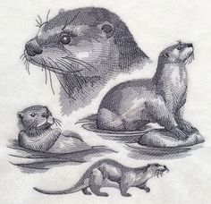 Machine Embroidery Designs at Embroidery Library! Animal Sketches, Animal Drawings, Art Drawings, Otter Tattoo, Desenho Tattoo, Delphine, Sea Otter, Sketch Inspiration, Illustrations