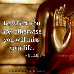 273 vind-ik-leuks, 5 reacties - Buddha In My Heart (@buddhainmyheart) op Instagram: 'Do you agree? ❤️ Follow us: -@buddhainmyheart Via: @buddha.forever Thank you so much!'