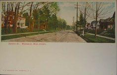 Cooper St. postcard, Woodbury, NJ.
