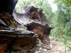3. Giant City State Park (Stone Fort)  13 spots in Illinois.  Read the comments too