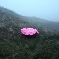 Instagram media melanie_bonajo - #wind#moon#mist#pink#magic
