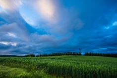 The sky in wheat field by Nao Akimoto on 500px