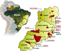 Brazil's Coffee Regions - Brasilbar