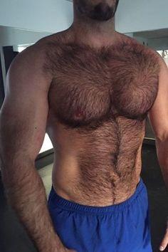 http://hairyhotman.tumblr.com/