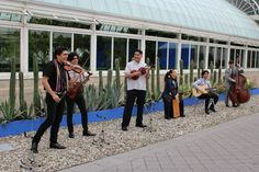 Frida Kahlo: Art, Garden, Life in the New York Botanical Garden | Live Performance by Organ Pipe Cacti Fence | FATHOM