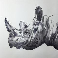 EOBrownArt: Brush pen and watercolor drawing of a rhinoceros